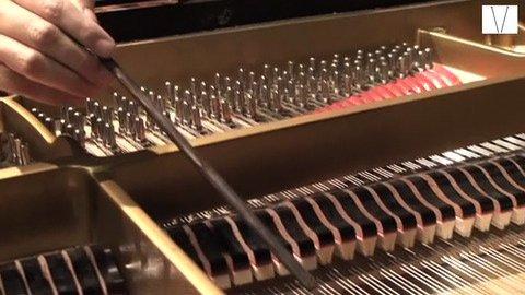a pianista carla ruaro