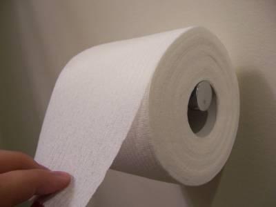 Papel Higienico vai para o esgoto que é completamente coletado e processado em estações de tratamento
