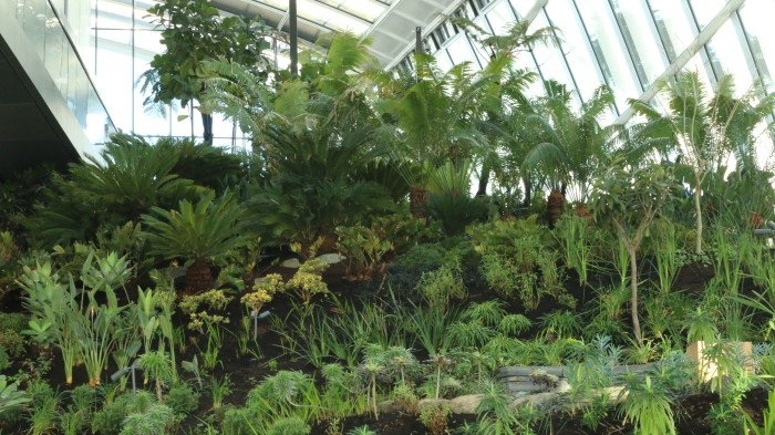 Visita ao Walkie Talkie Garden