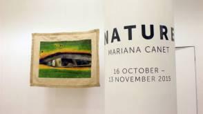 mariana canet na embaixada do brasile em londres