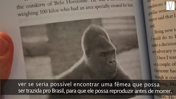 foto do gorila idi amin no livro de alan charlton