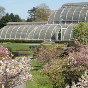 Kew Gardens - jardim botânico de Londres