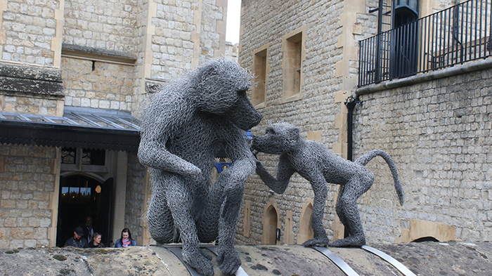 animais na tower of london