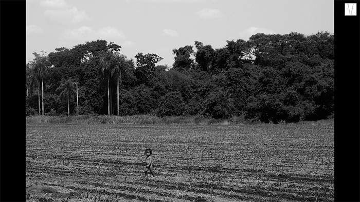 Guarani-Kaiowá
